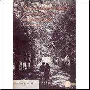 Entre o Desejo e o Misterio novos caminhos da Sexualidade Ano 11 n° 42 / Lucia Ribeiro Org / 1914