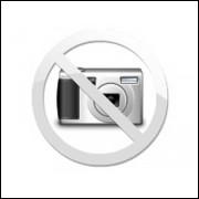 O Cavalo De Troia Versao 1982 / Apocrifo / 9726