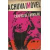A Chuva Imovel / Campos De Carvalho / 9818