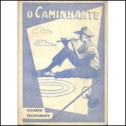 O Caminhante / Zalkind Piatigorsky / 10196