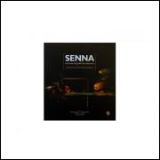 Senna A Historia Do Tetracampeonato / Diego Salgado; Ricardo Taves / 10820