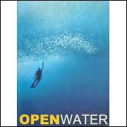 Manual De Mergulho Openwater / Marcus Werneck / 11508